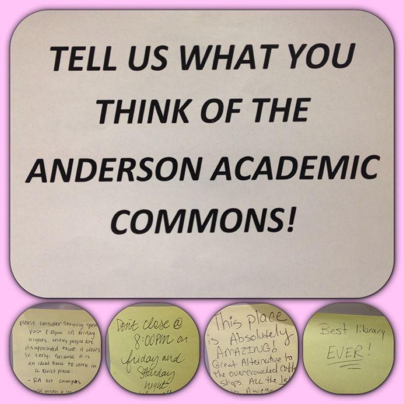 Anderson 17