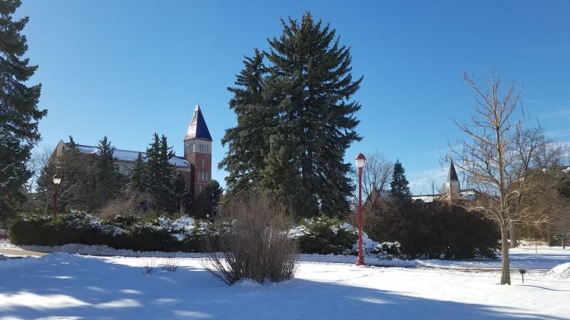 DU Snow 1